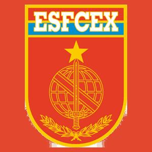 brasão EsFCEx